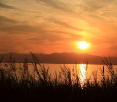 秋の琵琶湖おかっぱりにおすすめのルアー8選