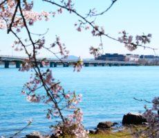 春の琵琶湖おかっぱりにおすすめのルアー7選